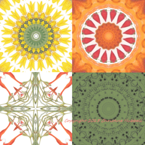 Kaleidoscope fabric images